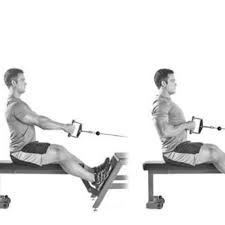 Doing the seated row without machine